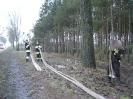 Kołaczkowo 18.02.2011