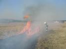 wypalanie traw 2012
